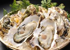 牡蠣祭 -Oyster Promotion-